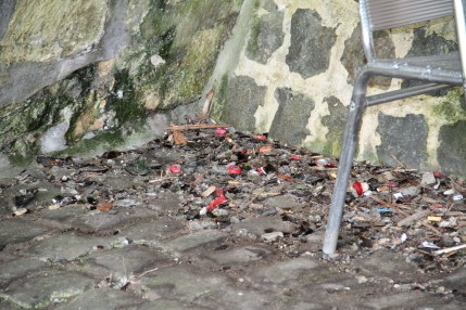 sluikstorten - onder de brug achter kasteel - IMG_5489