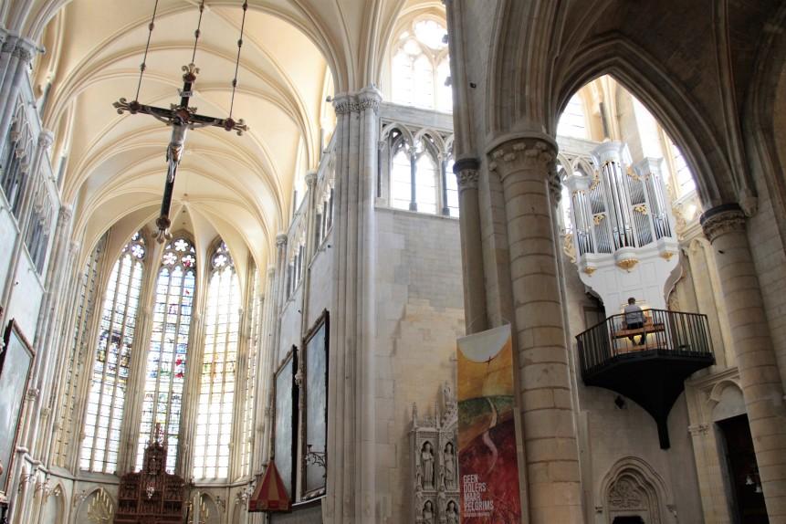 vogelnest orgel basiliek Tongeren IMG_6585