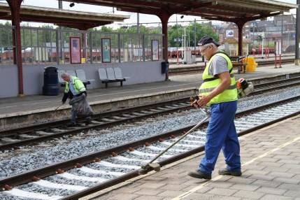 zottegem spoorwegen spoorlopers onderhoud IMG_7206