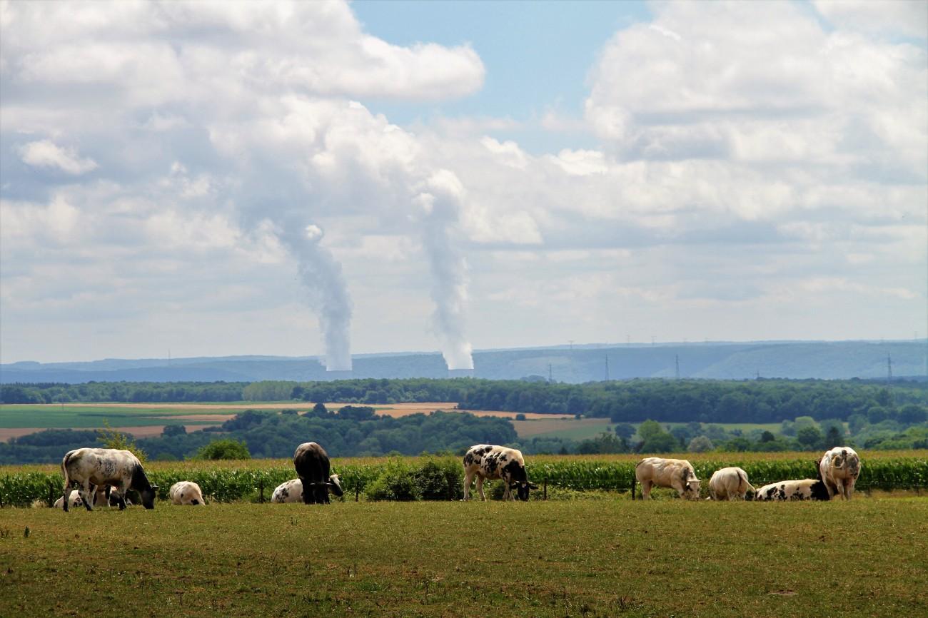 chooz kerncentrale vanop belgisch grondgebied 20km vogelvlucht IMG_9023