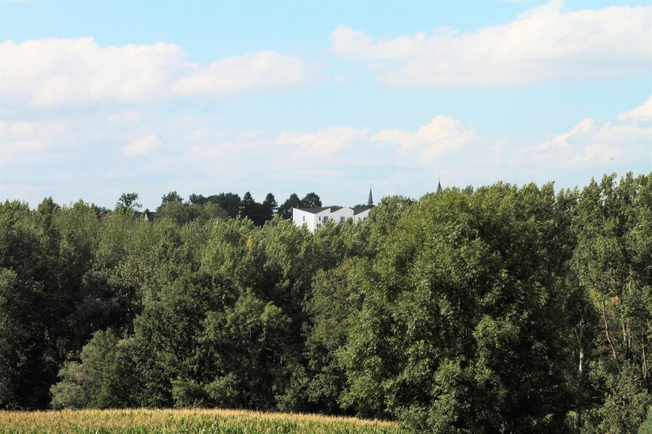 Oudenhove Triamant Skyline - IMG_0253