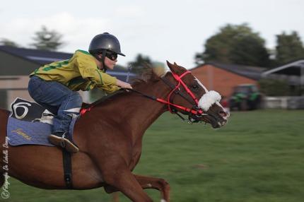 DDL merelbeke paardenkoers roskam (13)