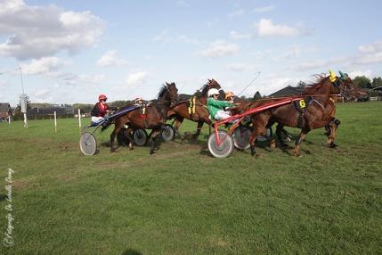 DDL merelbeke paardenkoers roskam (9)