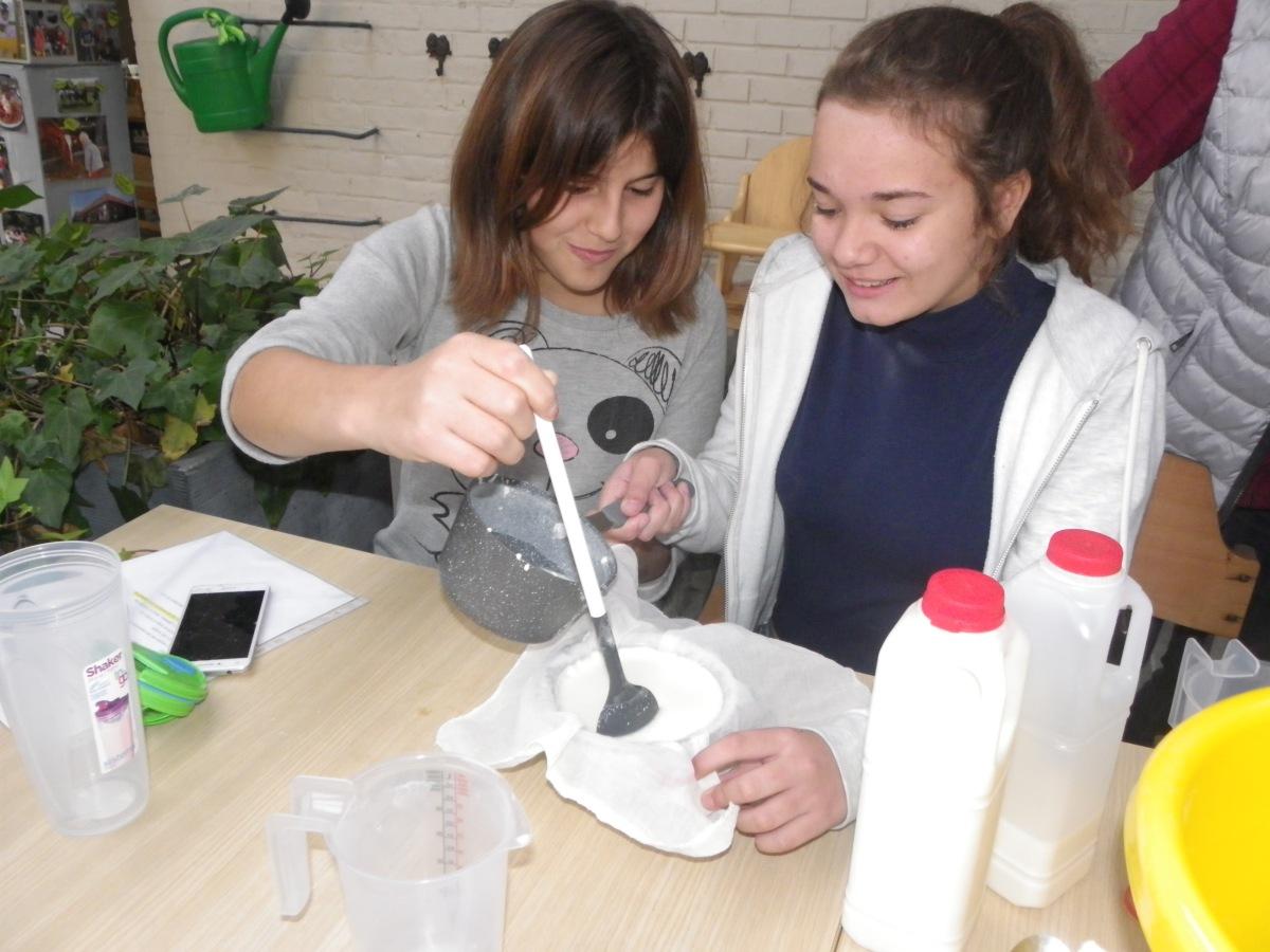 Leerlingen krijgen les in melkveebedrijf