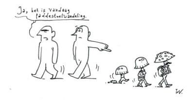 paddestoelwandeling-in-het-duivenbos